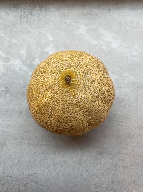 Melon (single)
