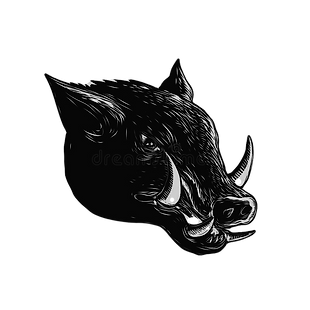 razorback-wild-boar-scratchboard-style-i