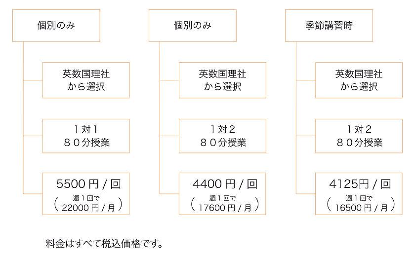 HP用料金概略図_個別v2.jpg