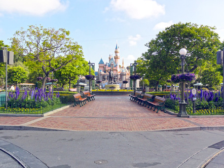 Why has Disneyland been so empty, since the opening of Star Wars, Galaxy's Edge