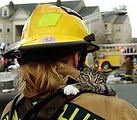 first-responder-firefighter-with-rescued