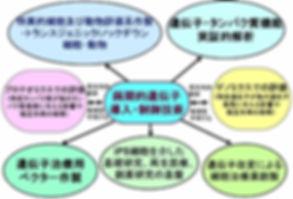 図4. 画期的遺伝子導入・制御技術の活用