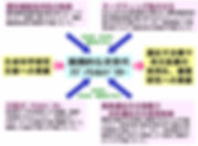 図5. 画期的な次世代アデノウイルスベクター