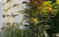 Lückenfüller.design_Gartenabtrennwand_Perspektive-mit-Begrünung