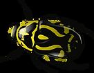 bug-34375_960_720.png