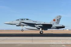 NAF El Centro - Nov 17, 2015  Boeing EA-18G Growler  VAQ-129 Vikings - United States Navy