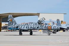 NAS Fallon - Jun 10, 2019  Northrop F-5E Tiger II  VFC-13 Fighting Saints - United States Navy