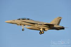 NAF El Centro - Nov 16, 2015  Boeing EA-18G Growler  VAQ-129 Vikings - United States Navy