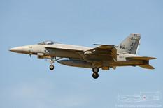 NAS Oceana - Apr 25, 2016  Boeing F/A-18E Super Hornet  VFA-31 Tomcatters - United States Navy