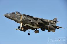NAF El Centro - Nov 17, 2015  McDonnell Douglas AV-8B Harrier II  VMAT-203 Hawks - United States Marine Corps