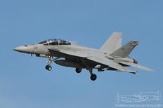 Pt Mugu - Jan 31, 2014  Boeing F-18F Super Hornet  VX-9 Vampires - United States Navy
