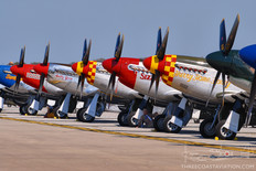 Gathering of Mustangs & Legends - 2007  North American P-51 Mustang Lineup