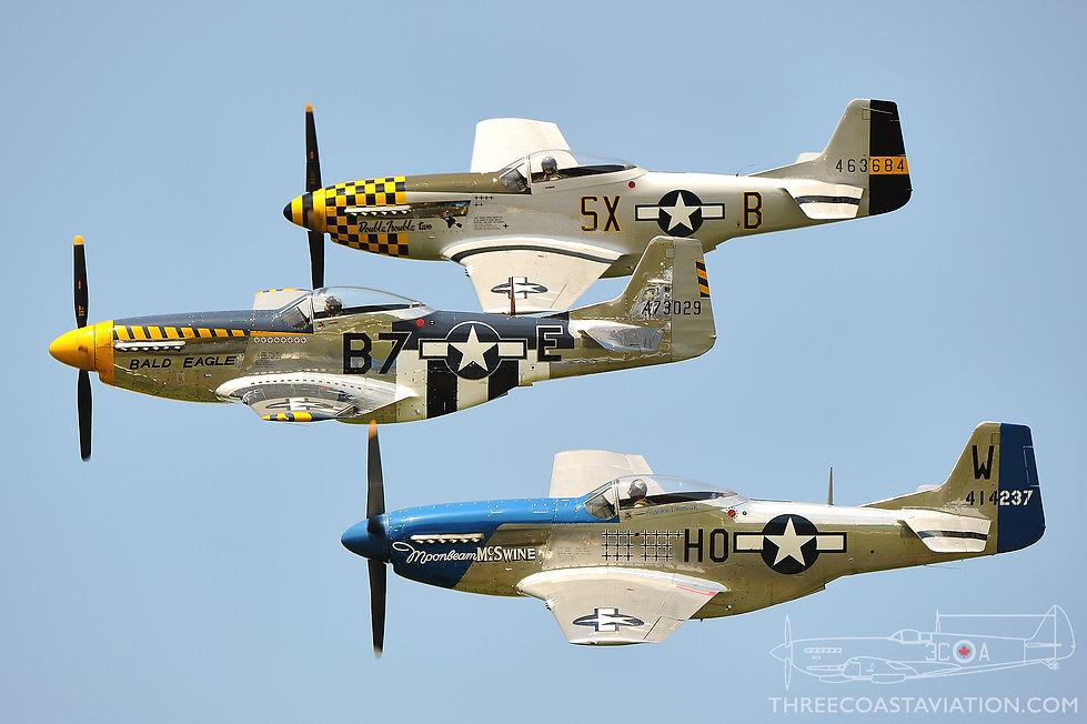Thunder Over Michigan - 2010 - The Horsemen Flight Team
