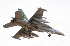 Red Flag 20-2  Boeing EA-18G Growler  United States Navy