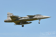 NATO Tiger Meet - 2017  Saab JAS-39C Gripen  211th Tactical Squadron - Czech Air Force