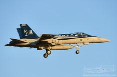 NAS Oceana - Apr 26, 2016  McDonnell Douglas F/A-18C Hornet  VFA-37 Ragin' Bulls - United States Navy