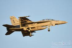 NAS Oceana - Apr 26, 2016  Boeing F/A-18F Super Hornet  VFA-211 Checkermates - United States Navy