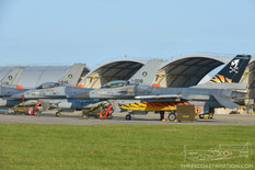 NATO Tiger Meet - 2017  General Dynamics F-16 Fighting Falcon  Belgian and Royal Netherlands Air Forces