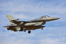 Luke AFB - Jan 30, 2018  General Dynamics F-16C Fighting Falcon  69th Fighter Squadron 'Werewolves' - United States Air Force
