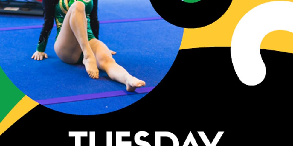 4:00pm - 6:00pm Recreational Gymnastics Tuesday 24 November 2020