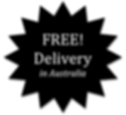 Holjack-Free-Delivery-330x300.png