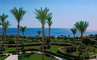 Египет7.jpg