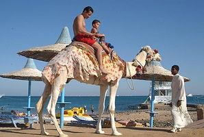 Египет1.jpg