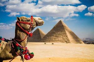 Египет5.jpg