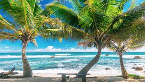 Шри-Ланка - доступный отдых