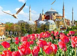 Фестиваль цветов в Стамбуле