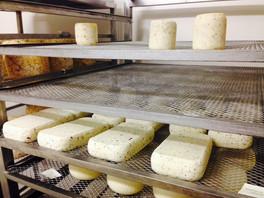 Corzano sheep's milk cheese