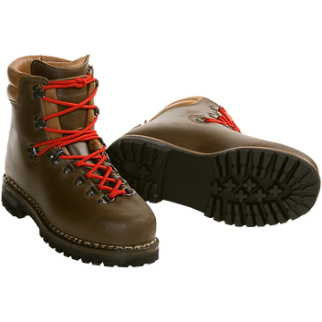 hiking-boots.png