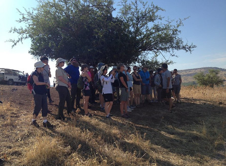 Reports from the Field: Day 10 @ El Araj