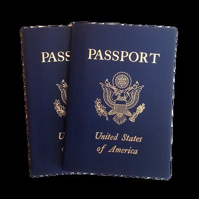 julianne-henry-us-american-passport-blue