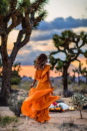 Vibrant Orange Flared Dress