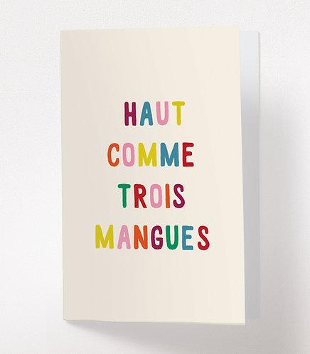 HAUT COMME 3 MANGUES