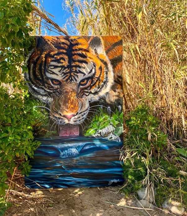 """""""Tigress"""""""