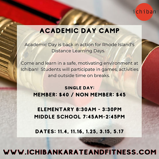 academic day camp virtual days.jpg