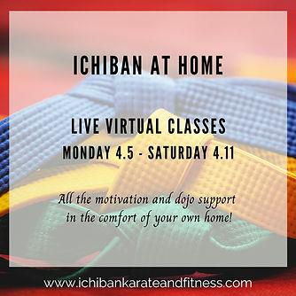 Ichiban at Home.jpg