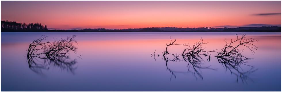'Calmness In The Madness' by Michael McCafferty, CB Camera Club