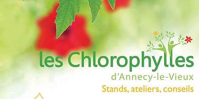 Chlorophylles-annecy-le-vieux-2015.jpg