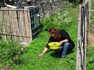 Au jardin de Jacqueline