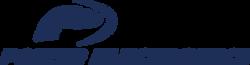 Logo_POWER ELECTRONICS