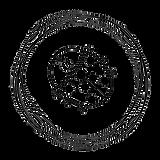 beruška v kroužku.png