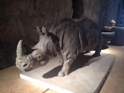 Rhino grès noir