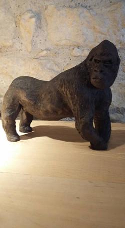 Gorille terre noire