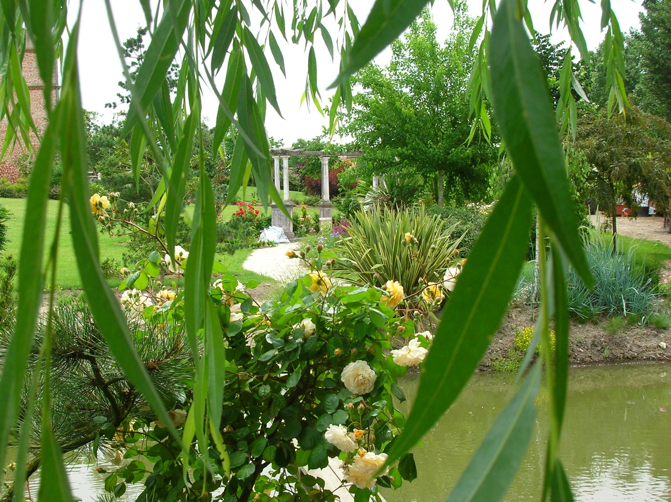 mai jardin 016