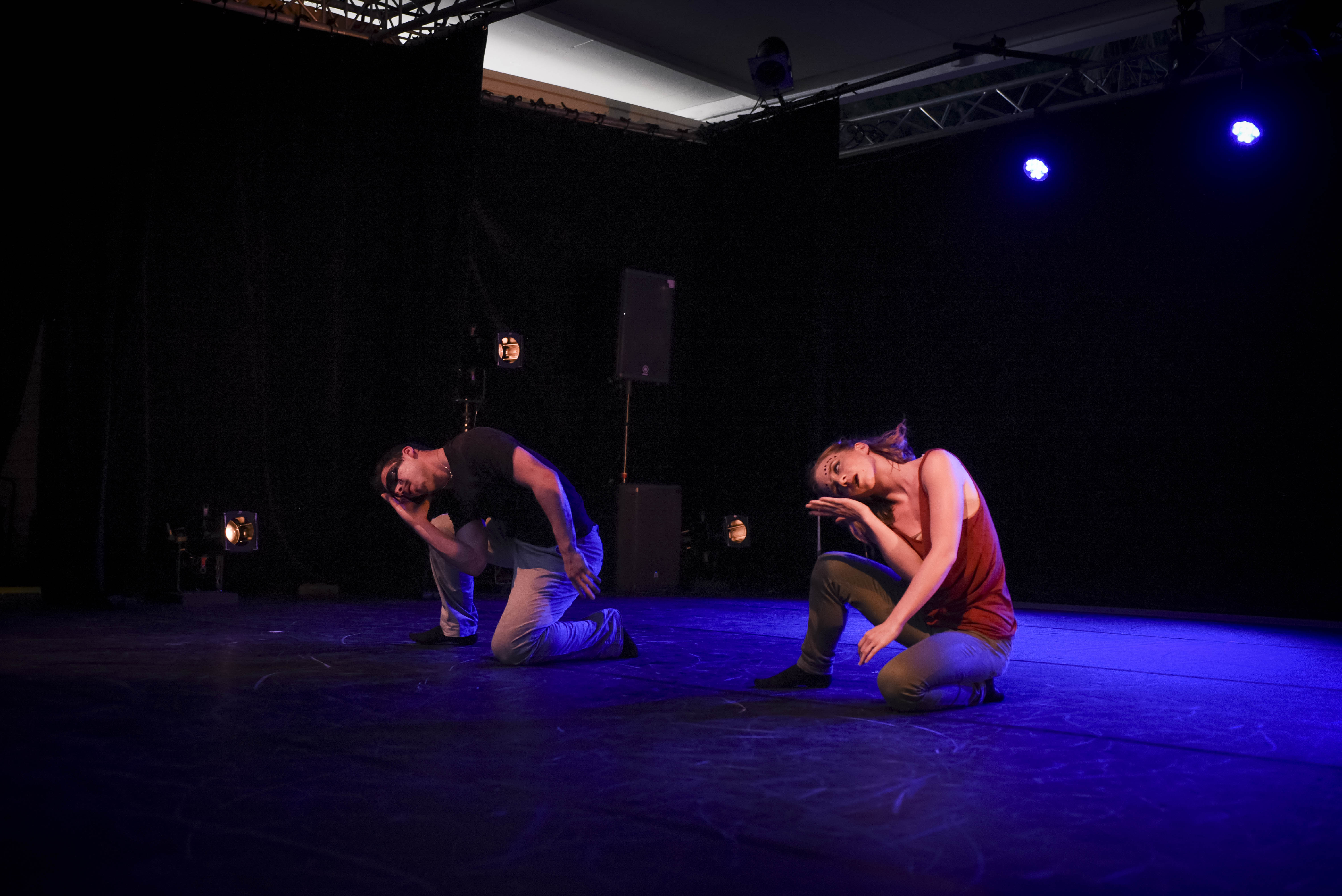 The Show_0503