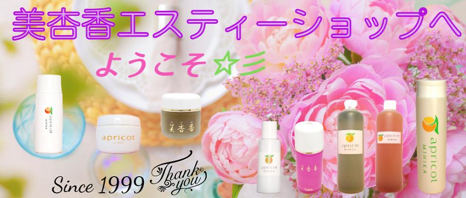 ブログ用商品画像.png