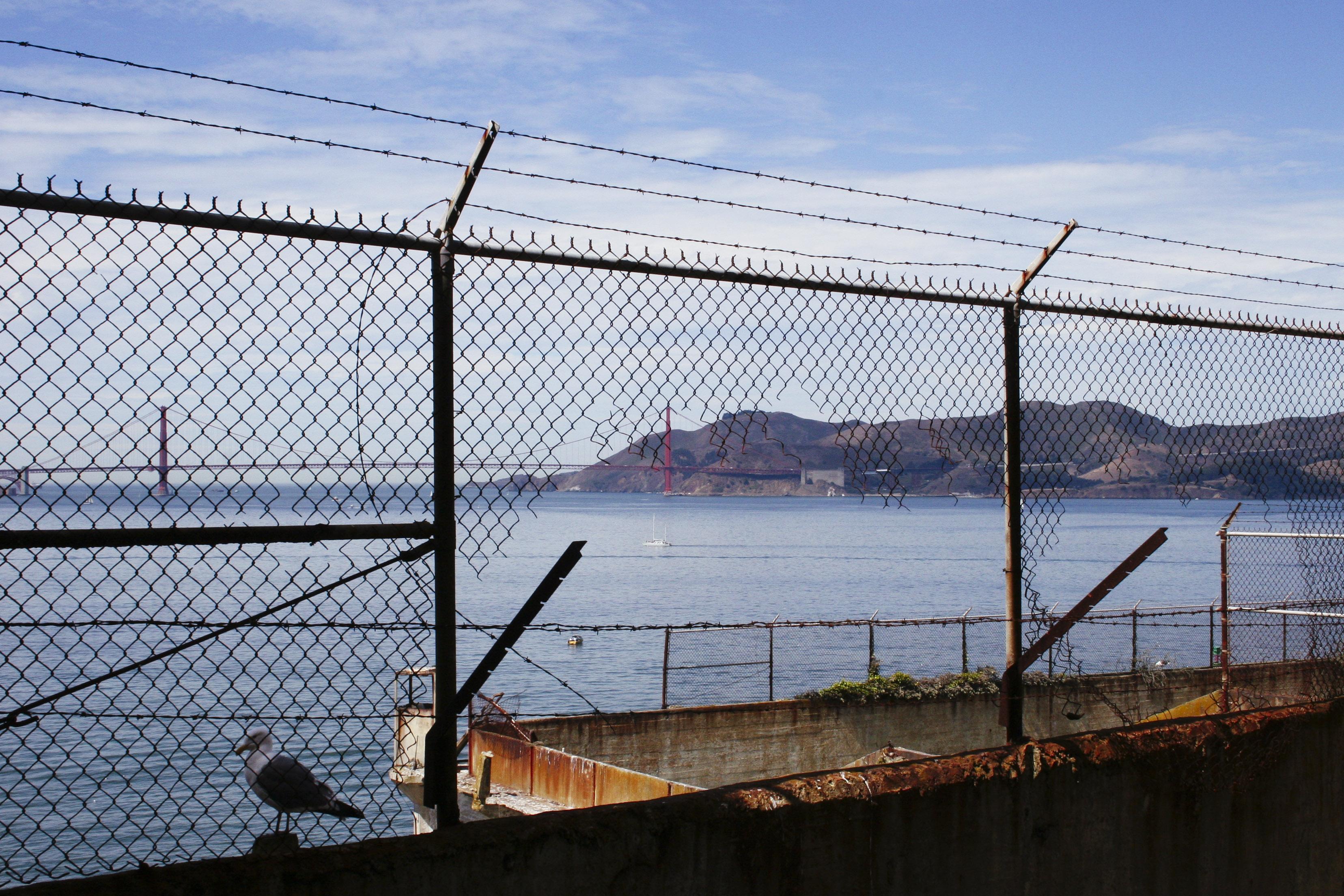 (c) Priscilla Stanley - Alcatraz
